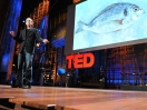 Dan Barber: How I fell in love with a fish