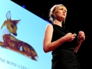 Christien Meindertsma: How pig parts make the world turn