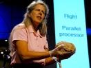 Jill Bolte Taylor's powerful stroke of insight