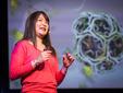 Janet Iwasa: Si animacionet mund të ndihmojnë shkencëtarët për të testuar një hipotezë