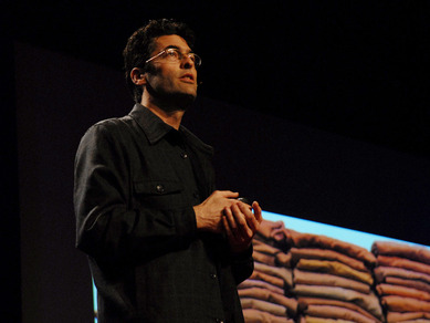 TED2008