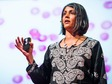 Sonia Shah: 3 reasons we still haven't gotten rid of malaria