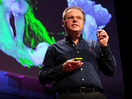 Gero Miesenboeck reengineers a brain