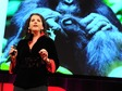 Isabel Behncke: Evolution's gift of play, from bonobo apes to humans