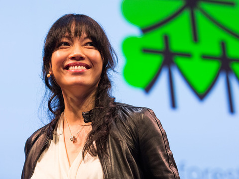 TED: ShaoLan: Learn to read Chinese ... with ease! - ShaoLan Hsueh (2013)