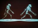 Susan Savage-Rumbaugh: The gentle genius of bonobos