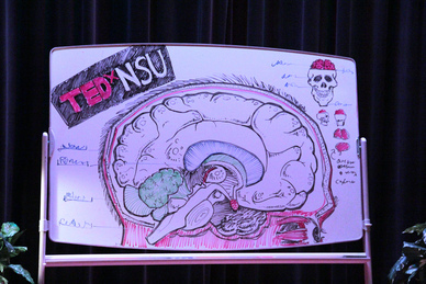 TEDxNSU