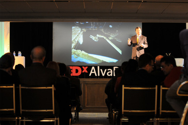TEDxAlvaPark