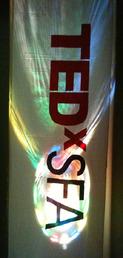 TEDxSFA