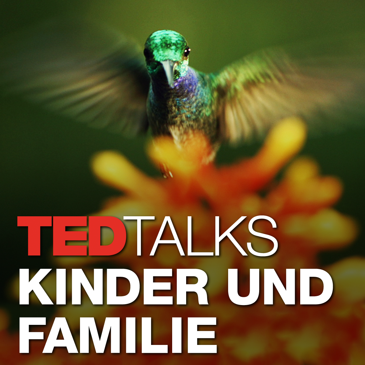 TEDTalks Kinder und Familie