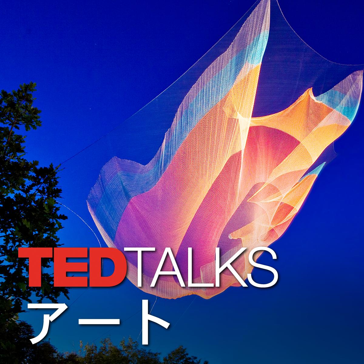 TEDTalks アート