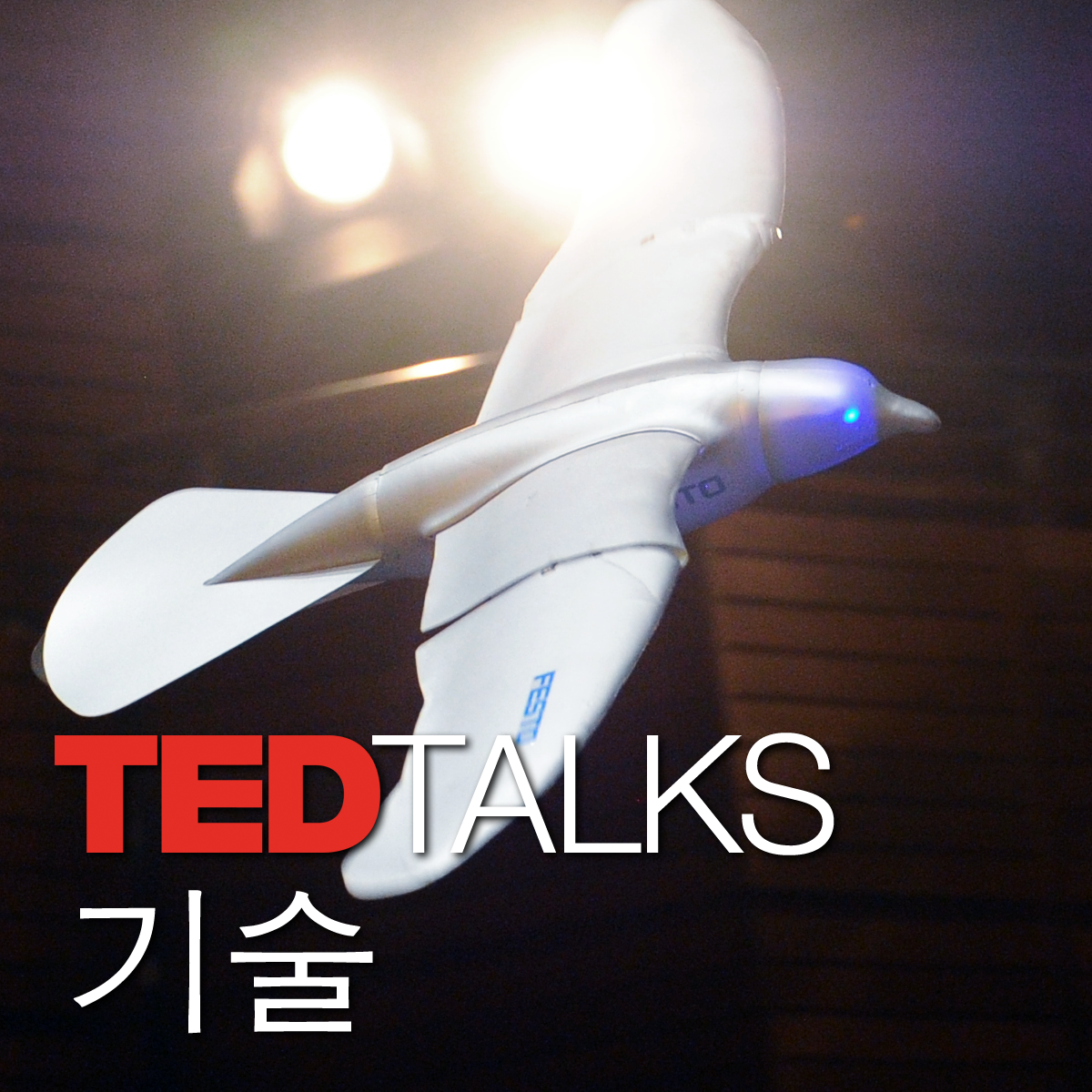 TEDTalks 기술