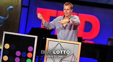Beau Lotto: Le illusioni ottiche ci mostrano come vediamo
