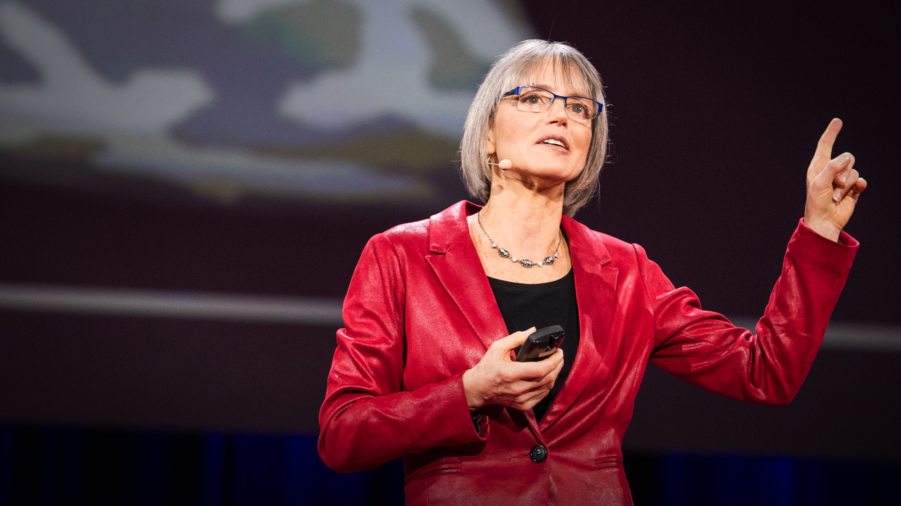 Nancy Kanwisher: The brain is a Swiss Army knife thumbnail