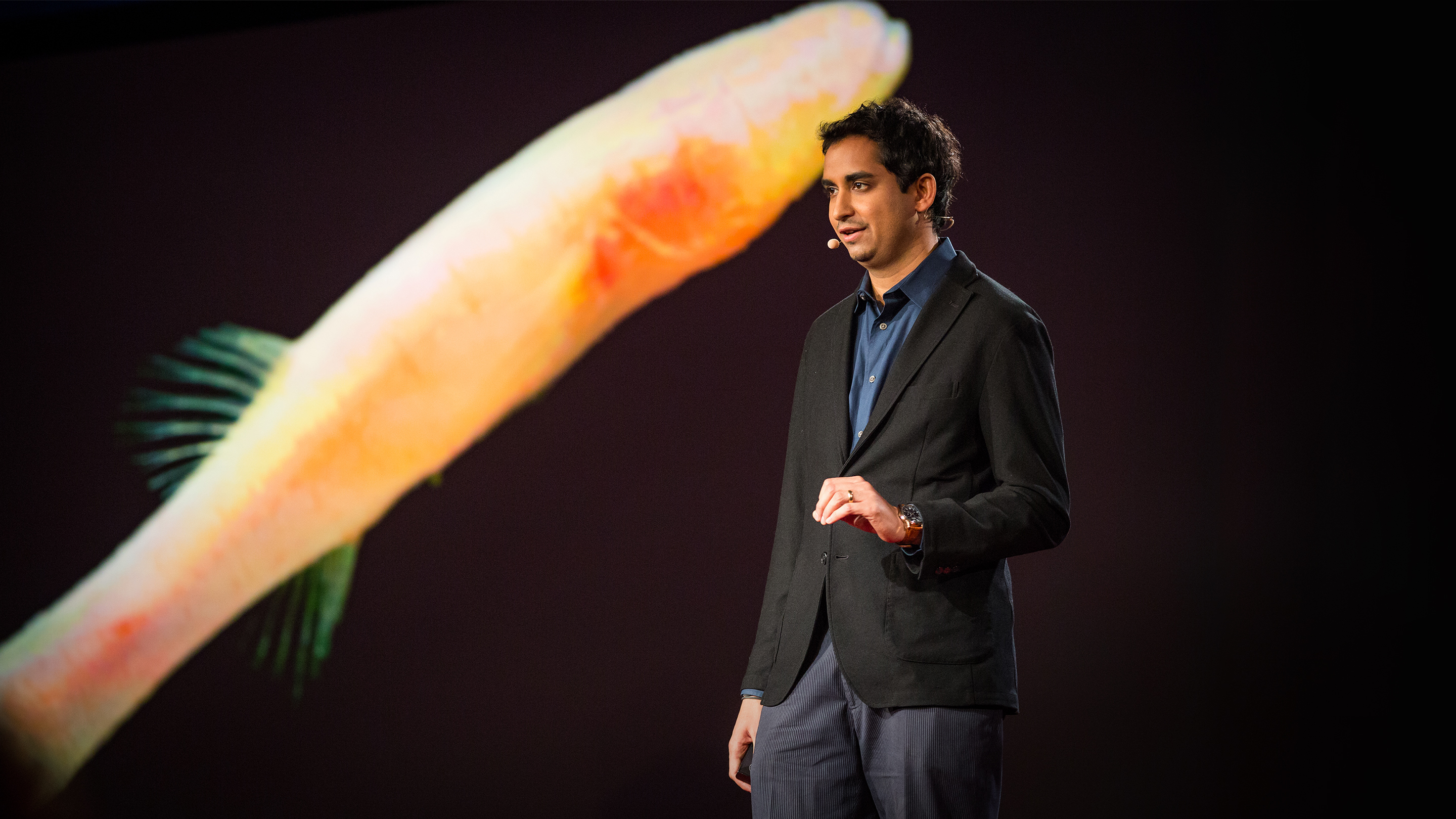 Prosanta Chakrabarty: Clues to prehistoric times, found in blind cavefish thumbnail