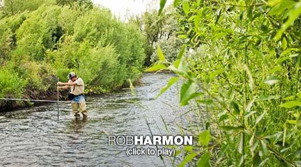Rob Harmon: come usare il mercato per restituire acqua ai fiumi