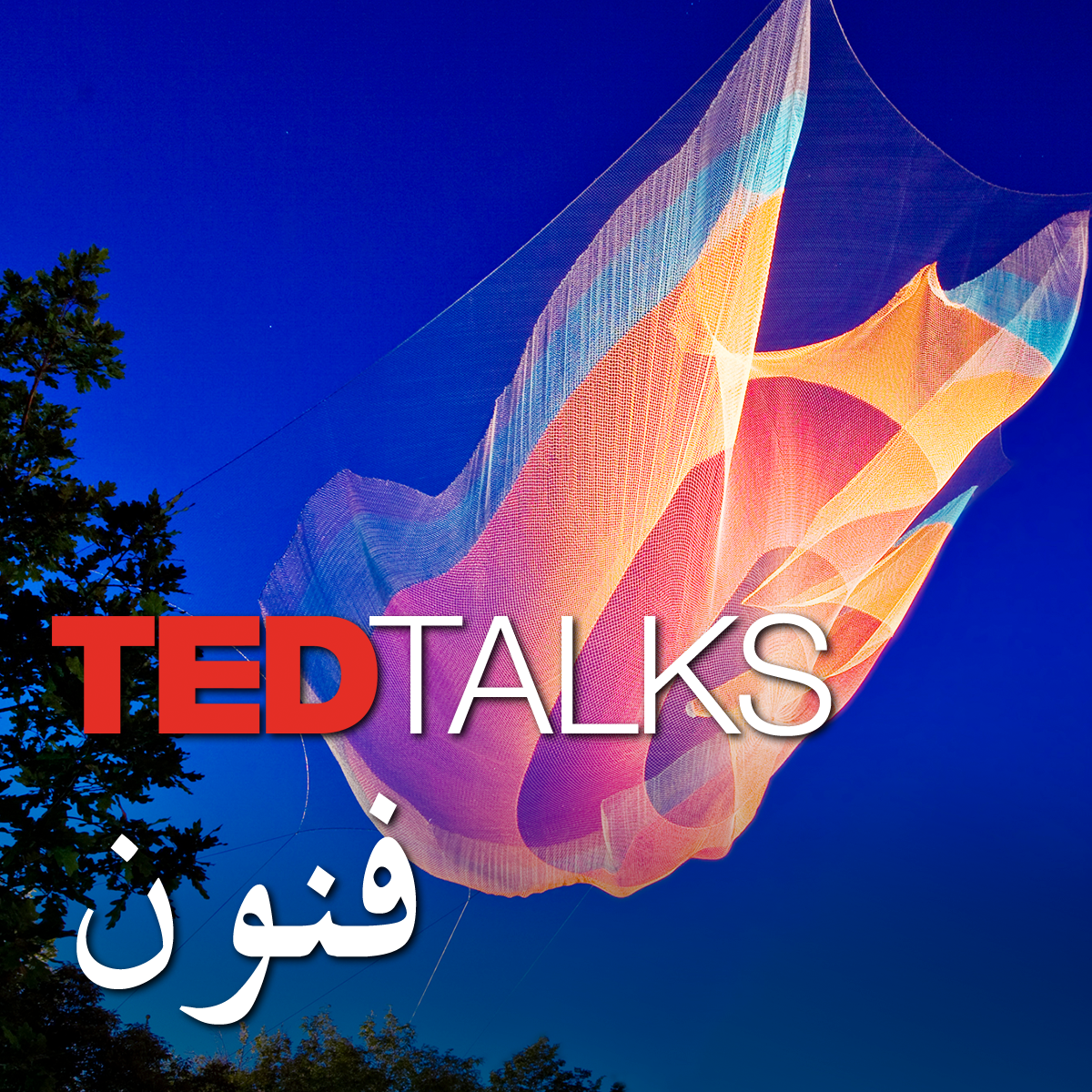 TEDTalks فنون